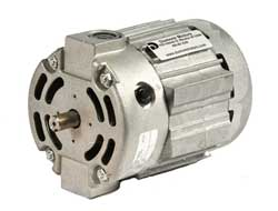 Series DSW custom series wound motors and custom wound field motors